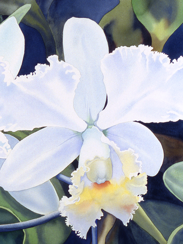 Tamlyn Akins, 'Opulent Orchids' (detail), watercolor