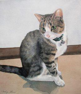 Tamlyn Akins pet portrait of Finn the Cat, watercolor