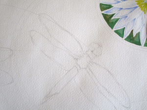 Up close of a dragonfly in progress, watercolor by Tamlyn Akins
