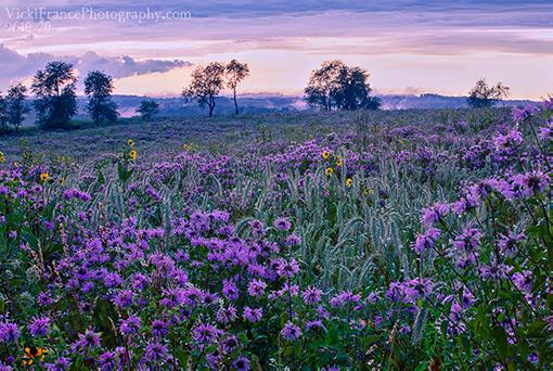 Vicki France Photography Wisconsin Landscape