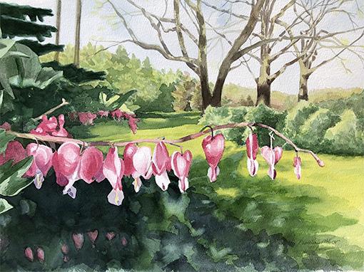 Pamela Grabber 'Backyard Bleeding Hearts' watercolor