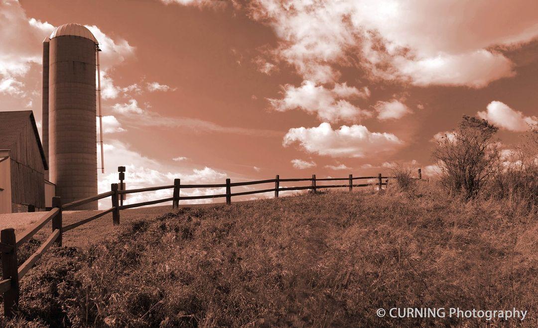 Jessica Curning-Kuenzi, 'Beautiful Day on the Farm' photograph